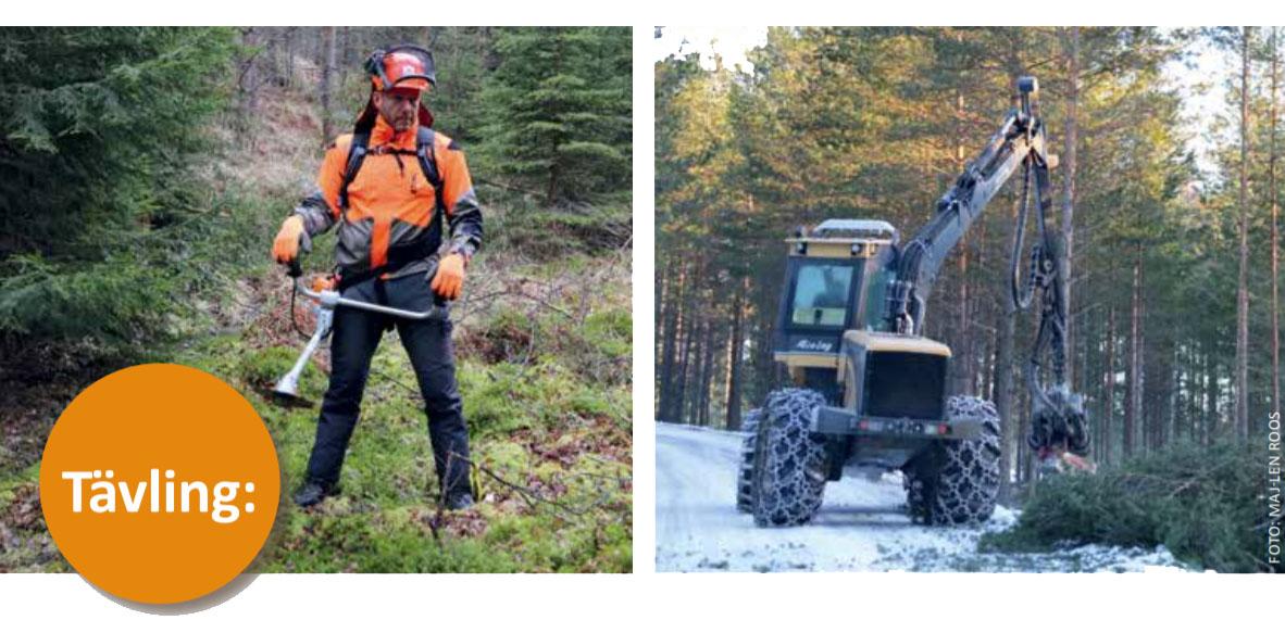Årets skogsentreprenör 2021 (2)